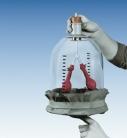 Set experimental mecanismul de respiratie diafragmatica P1049300